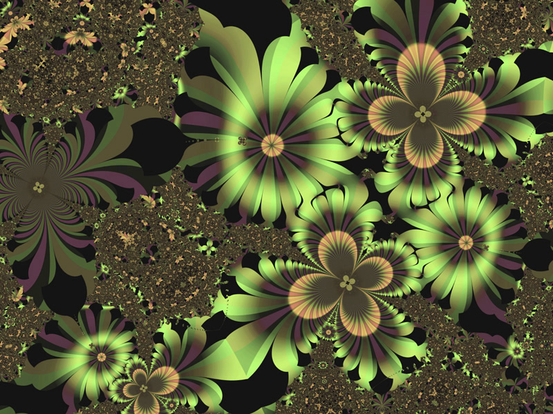 Flower wallpaper widescreen