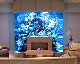 20 Unusual Places For Aquariums
