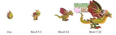 Dragão Wyvern - Informações
