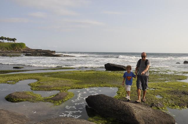 INDONESIA: monos, murciélagos gigantes y cangrejos en Bali