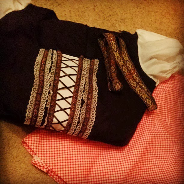 The lovely side do it yourself oktoberfest dirndl beer wench costume gingham dress waiting to be transformed solutioingenieria Images