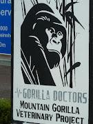 Gorilla Doctors Uganda