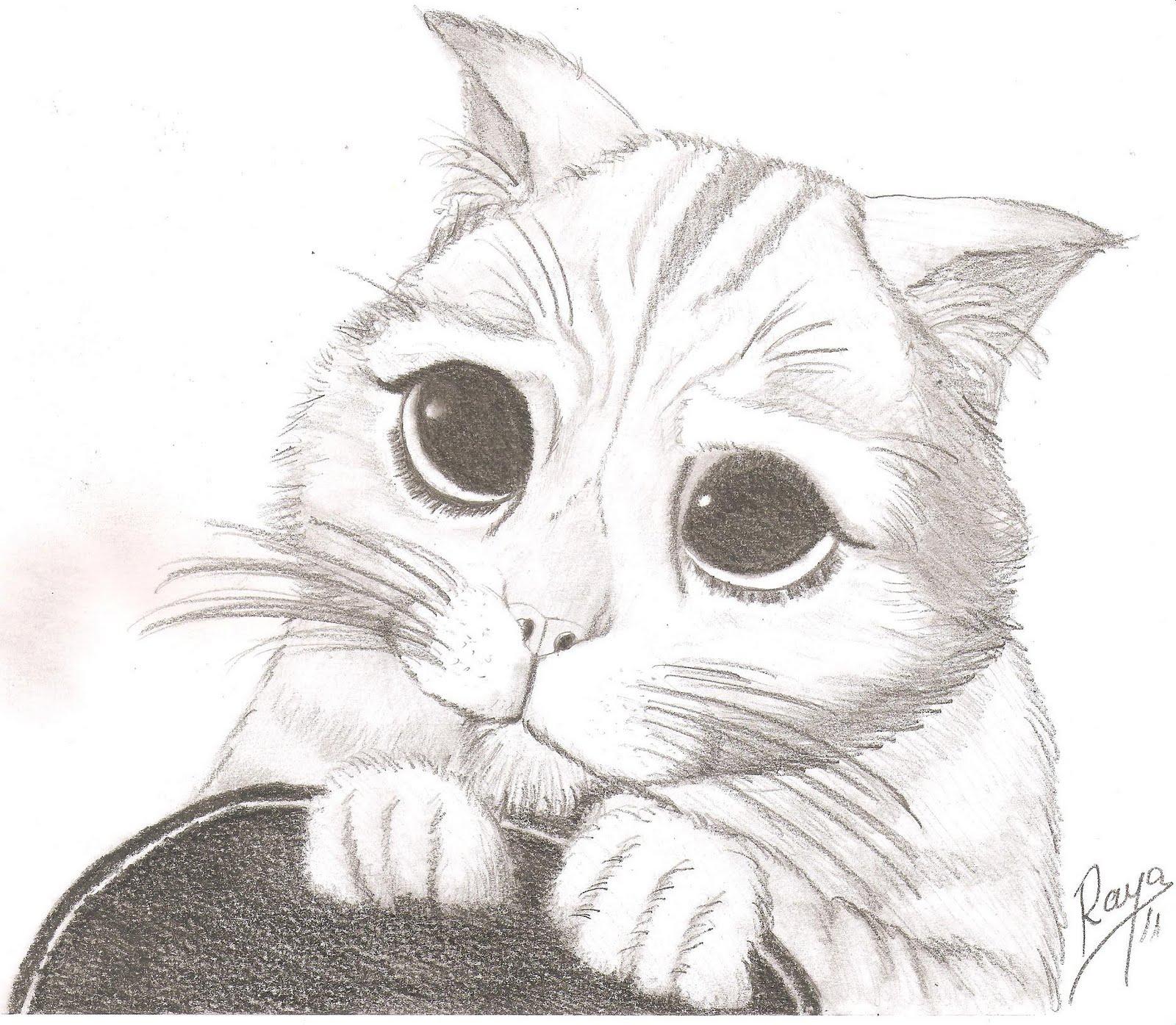gato con botas dibujo a lapiz b5b74ee3f44b258fec16d05089c62553