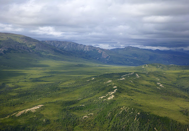 Birds Eye View, Denali National Park from a Plane, Alaska, #Denali #Alaska
