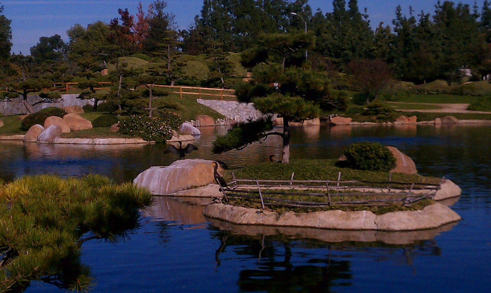 Things To Do In Los Angeles The Japanese Garden