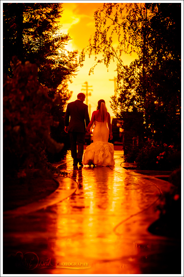 Bride and groom walking down golden pathway Mettler Family Vineyards
