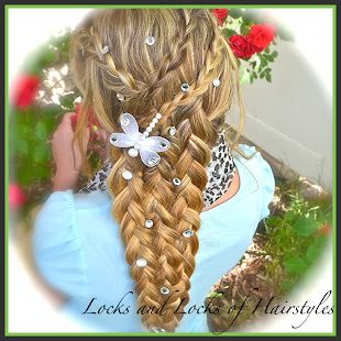 Rapunzel's Braid