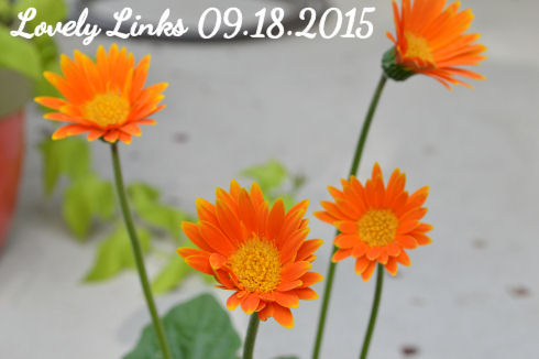 Lovely Links 09.18.2015 | seriously-lovely.blogspot.com