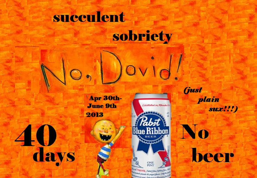 Succulent sobriety (just plain sux!!!)