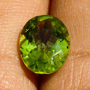 Batu Permata Black Green Peridot - SP907