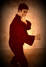 """""""JKD è semplicemente l'arte di semplificare"""" Bruce Lee"""