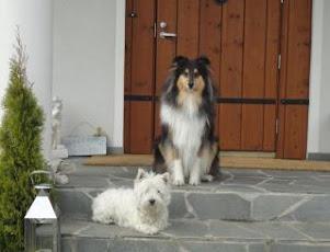 Emma ja Sulo vartioimassa kotia