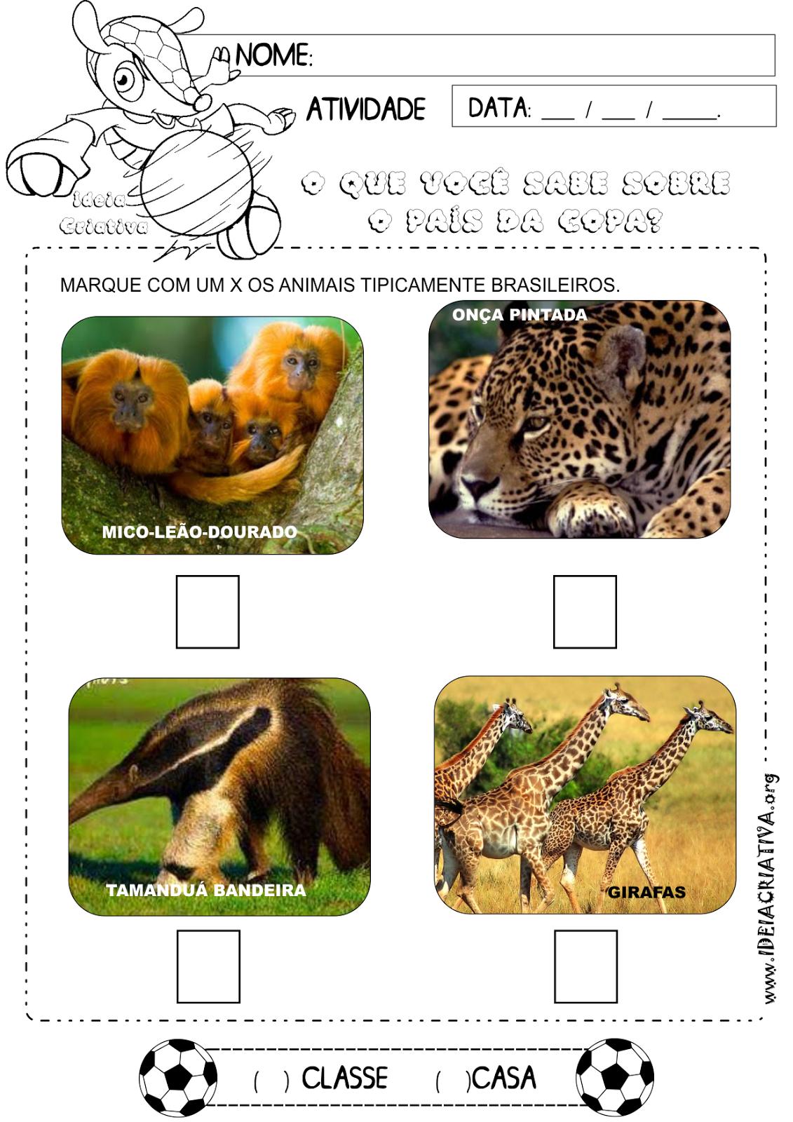 Atividade Copa do Mundo 2014 Animais tipicamente brasileiros