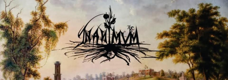 Inanimum