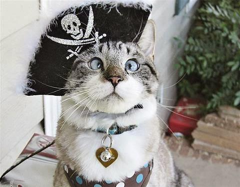A vida pirata é a vida mellor. . .