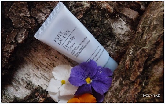 Estee Lauder, Perfectly Clean Multi Action Foam Cleanser/Purifying Mask