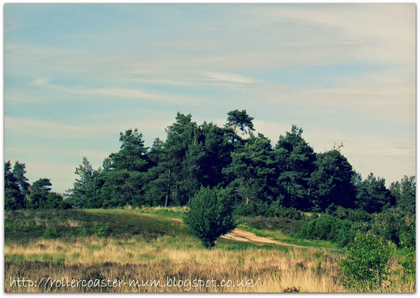 Gilleon's Lap or Gill's Lap, Ashdown Forest