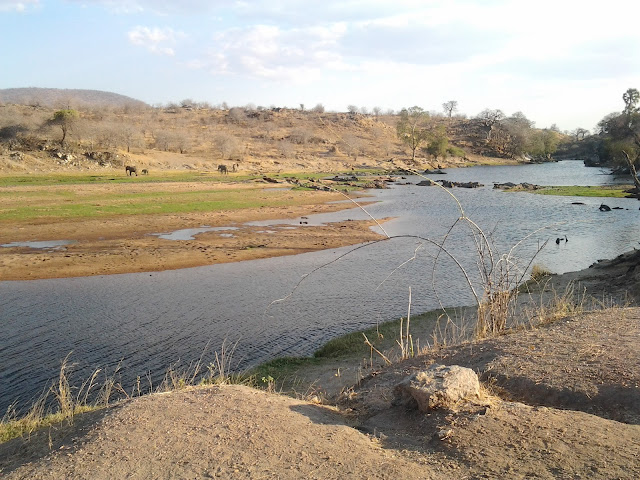 HSK Safaris, Ruaha National Park