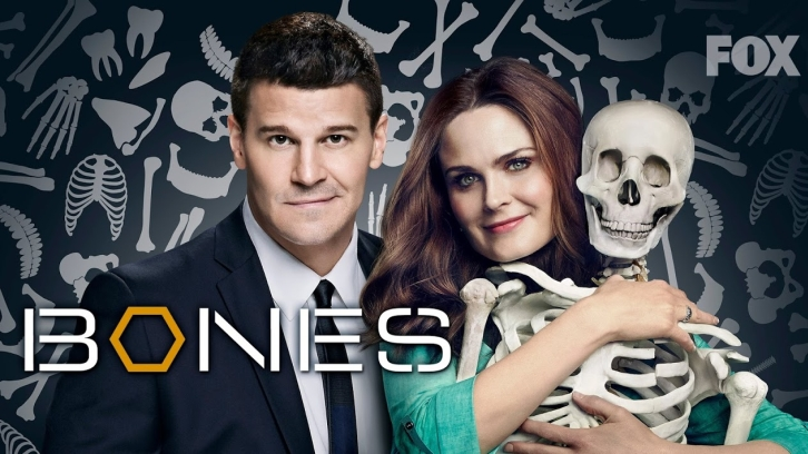 POLL : What did you think of Bones - The Stiff in the Cliff?