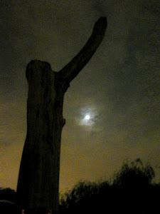 Una Luna de Milagros