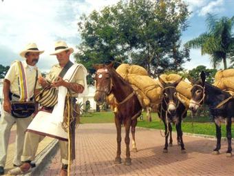 gobernacion antioquia colombia: