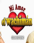 Mi Amor El