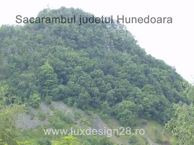 Zona Sacarambului din muntii metaliferi Apuseni