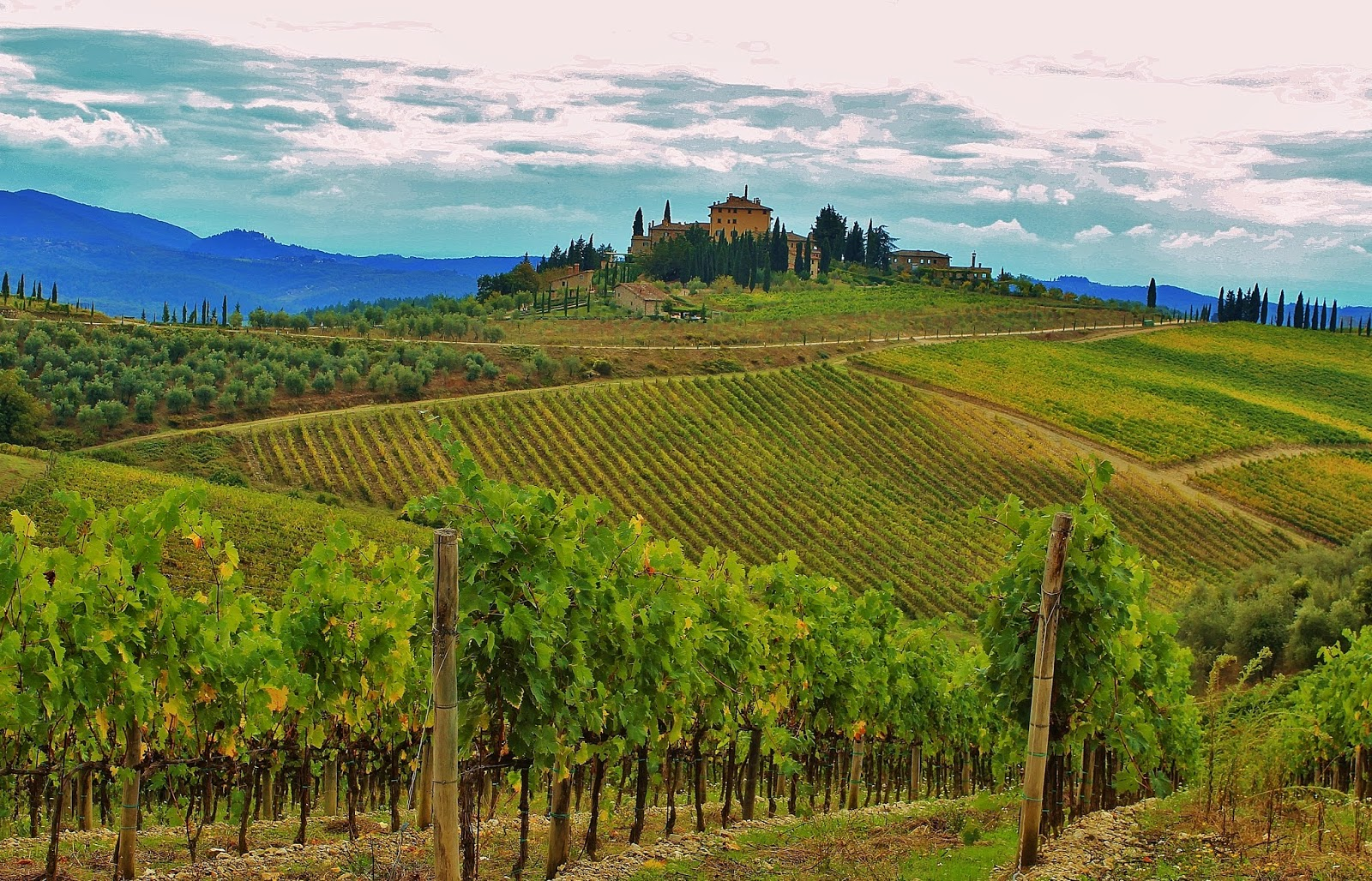 Tuscany vineyards chianti classico region