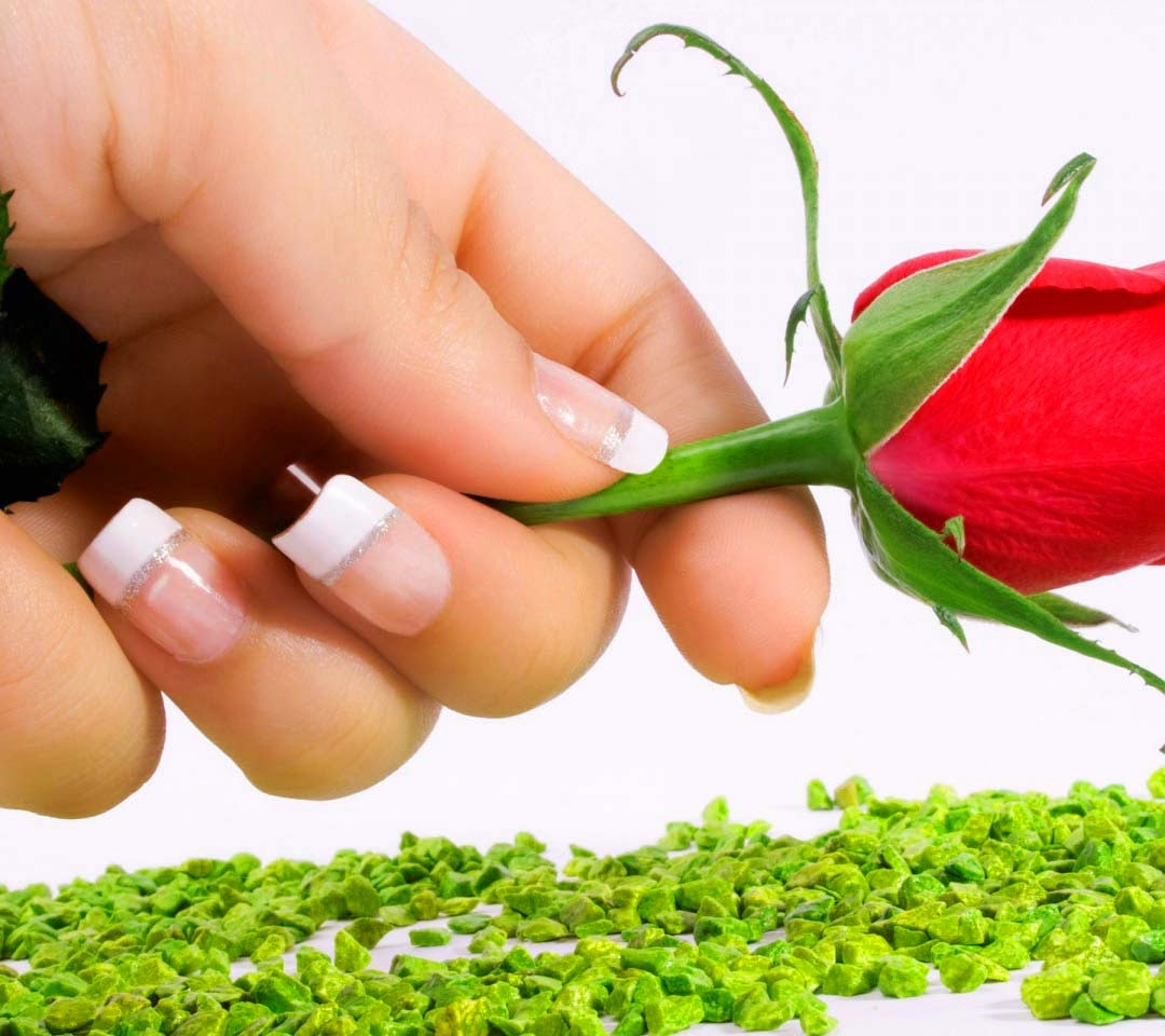 rose-hands-nails-flowers