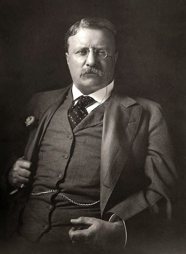 The Plural Of Hyena: Roosevelt Quotes: Words Of Wisdom ... Theodore Roosevelt