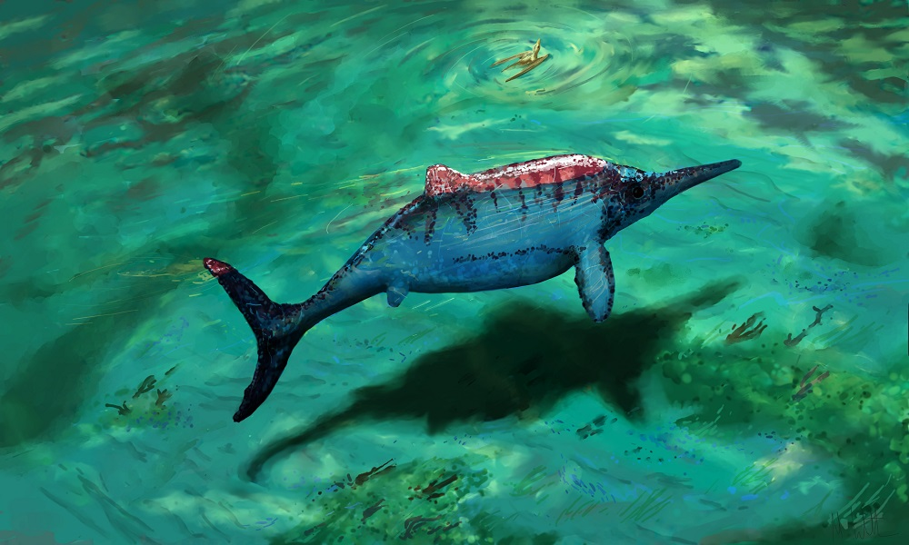 ryosuke motanis insights on the ophthalmosaurus in the article rulers of the jurassic seas Rulers of the jurassic seas: ryosuke motani scientific american, vol 283  jstor daily provides insight, commentary.