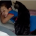 He Missed His Friend After Just Days Apart. Their Reunion Is Priceless, Though