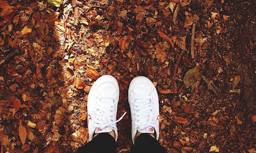 4 Reasons for Fall Fitness