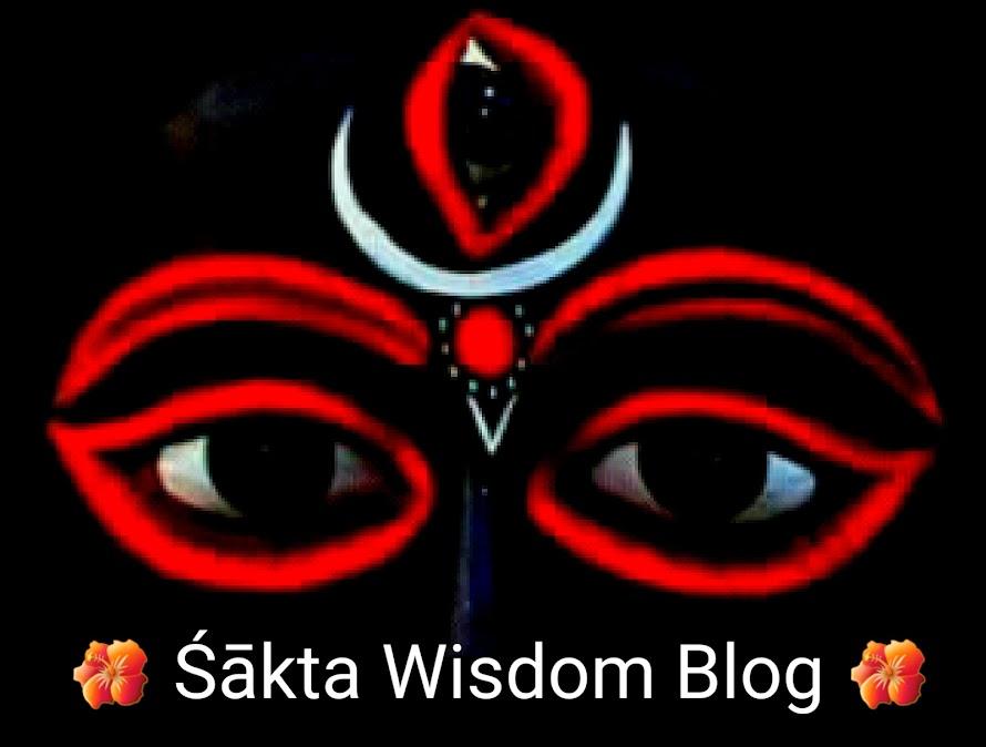 Shakta Wisdom Blog