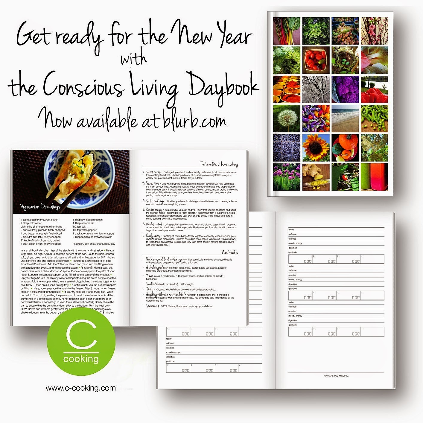 THE CONSCIOUS LIVING DAYBOOK IS NOW AVAILABLE AT BLURB.COM