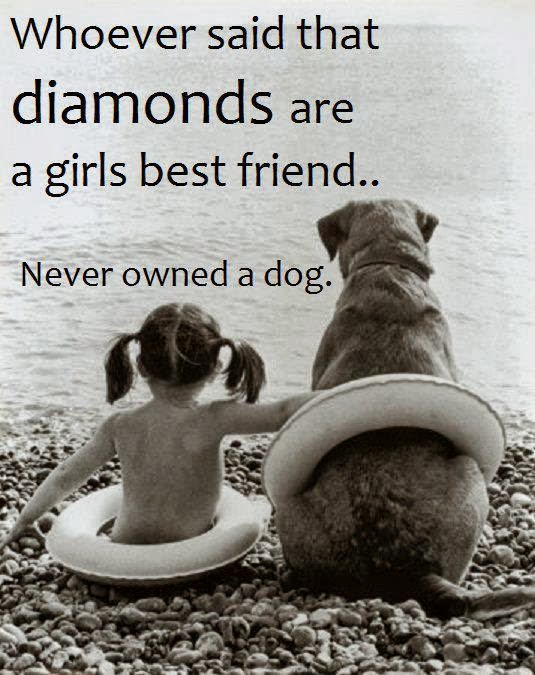 Dog loyalty quotes - photo#15