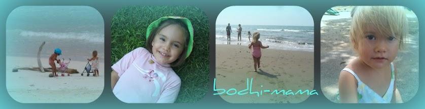 bodhi-mama