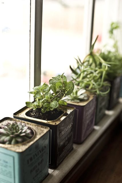 Make little planters for a windowsill garden from old tea tins Kitchen windowsill herb pots