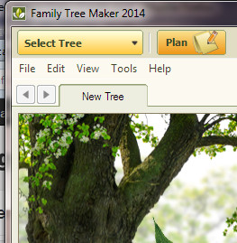 Family tree maker user ftm2014 plan workspace select for Tree house blueprint maker