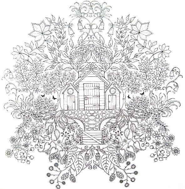 Glov and co jardin secret for Jardin dessin