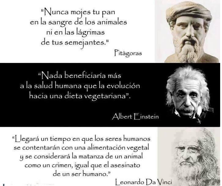 Pitágoras, Albert y Da Vinci