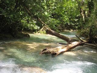 Mayfield Falls Waterfall Jamaica