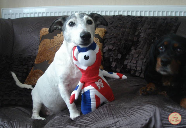 3 Molly The Wally Wrestles Wenlock The London 2012 Olympic Games Mascot.