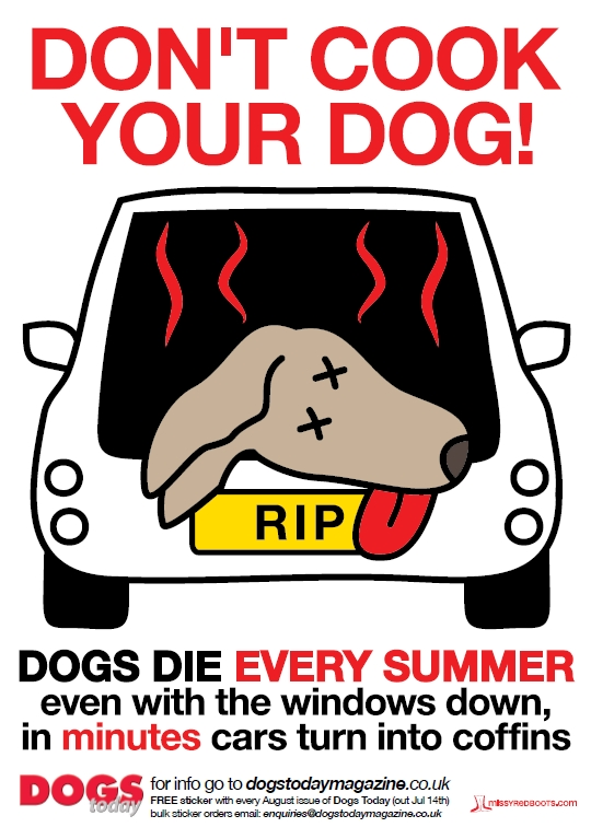 Tails from the field dog in car plus hot day equals dead dog for 1 plus 1 equals window