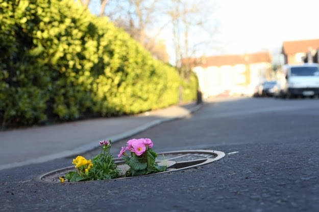 When a Pothole Can Be Beautiful