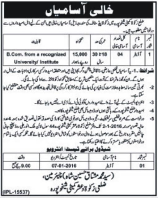 Auditors Jobs in Zakat & Ushar Sheikhu Pura