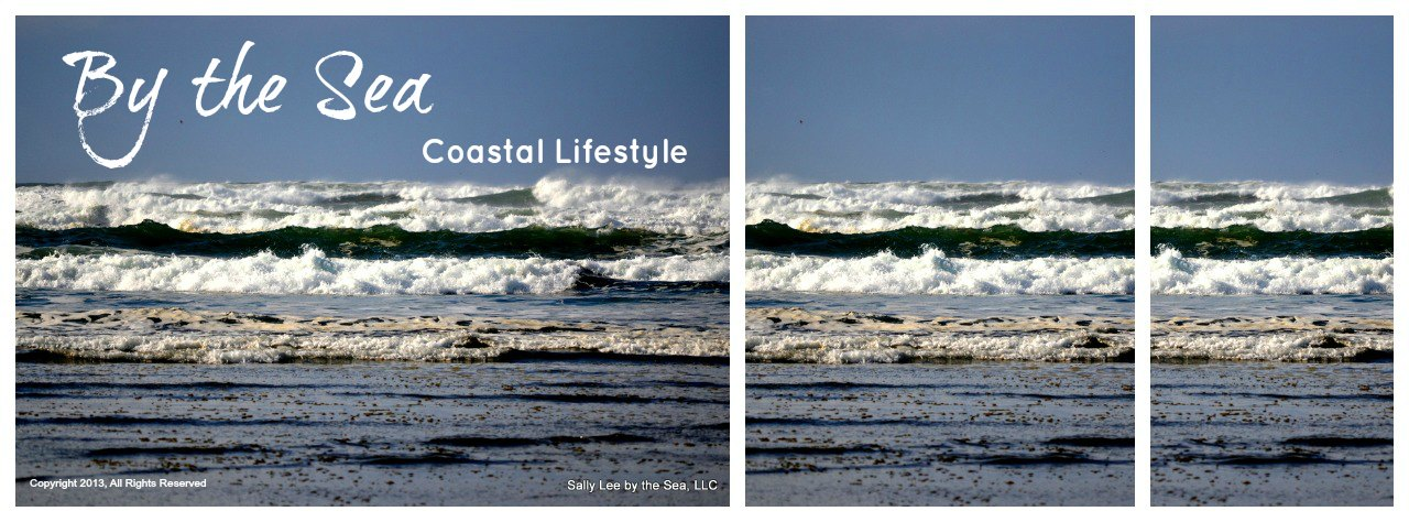 Sally Lee by the Sea Coastal Lifestyle Blog