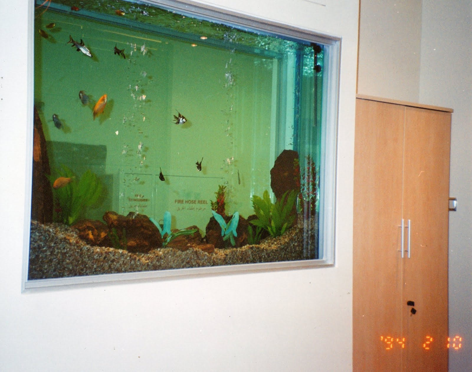 Fish aquarium karachi - Wall Built Aquariums