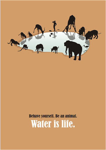 Подведены итоги конкурса плакатов на Всемирной неделе воды