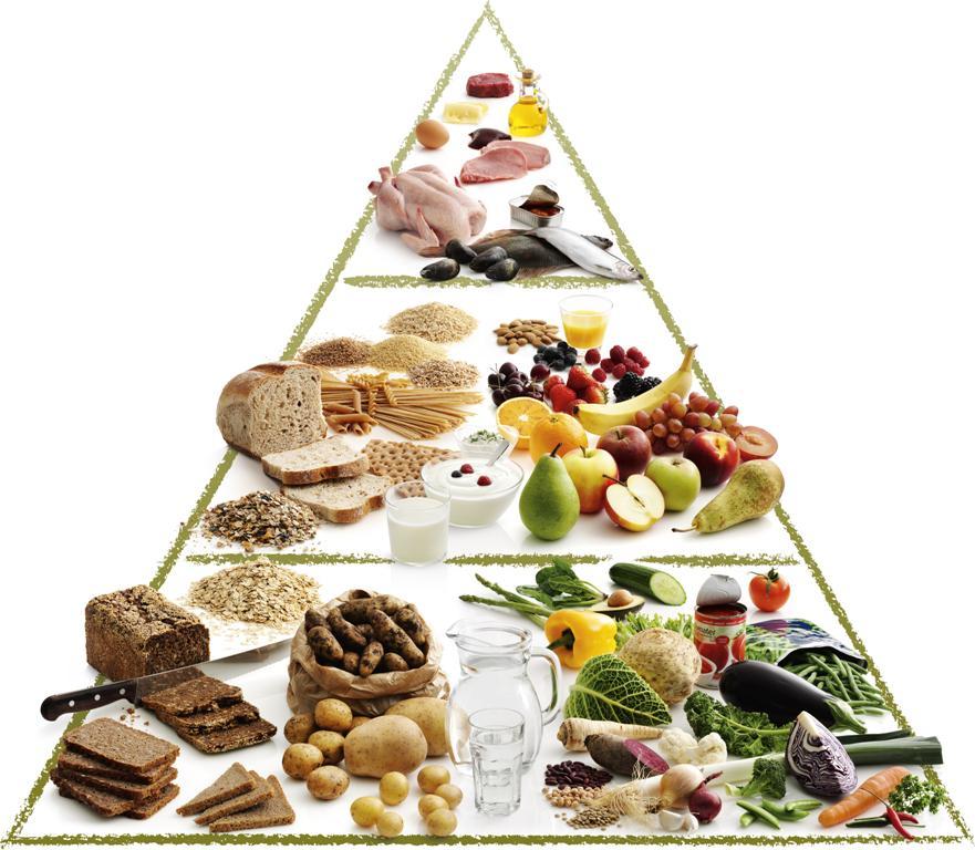 kost og livsstil